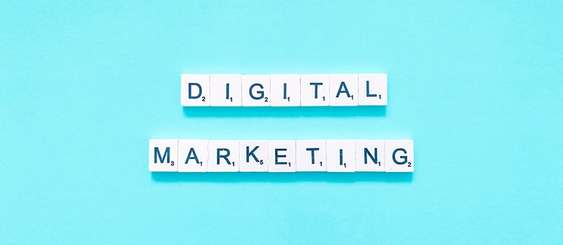 Professional Digital Marketer